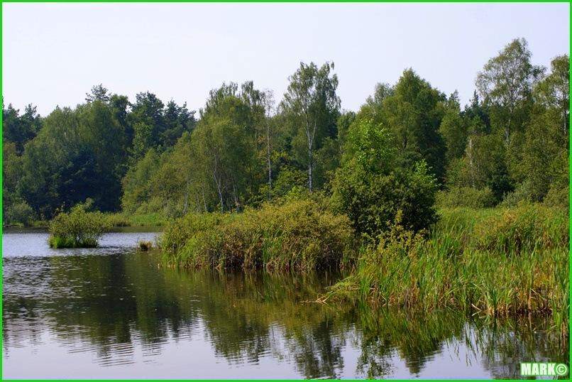 Mazovian Scenery - Blog1 (1)
