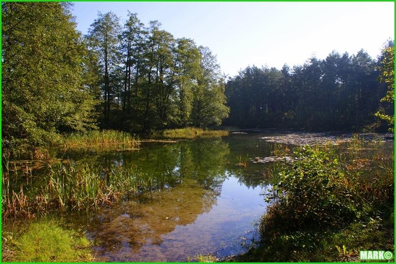Mazovian Scenery - Blog1 (3)