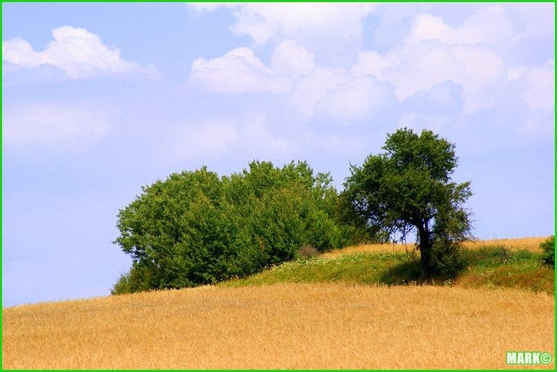 Mazovian Scenery - Blog1 (4)