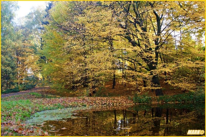 Kolory Jesieni - Blog 12