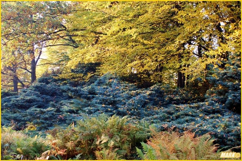 Kolory Jesieni - Blog 13