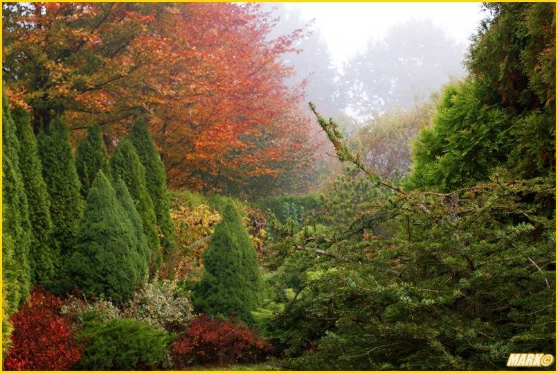 Kolory Jesieni - Blog 16
