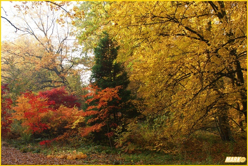 Kolory Jesieni - Blog 18