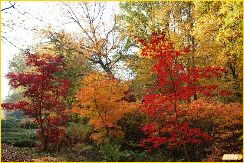 Kolory Jesieni - Blog 3