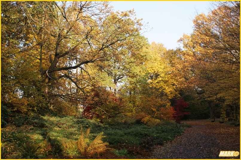 Kolory Jesieni - Blog 7