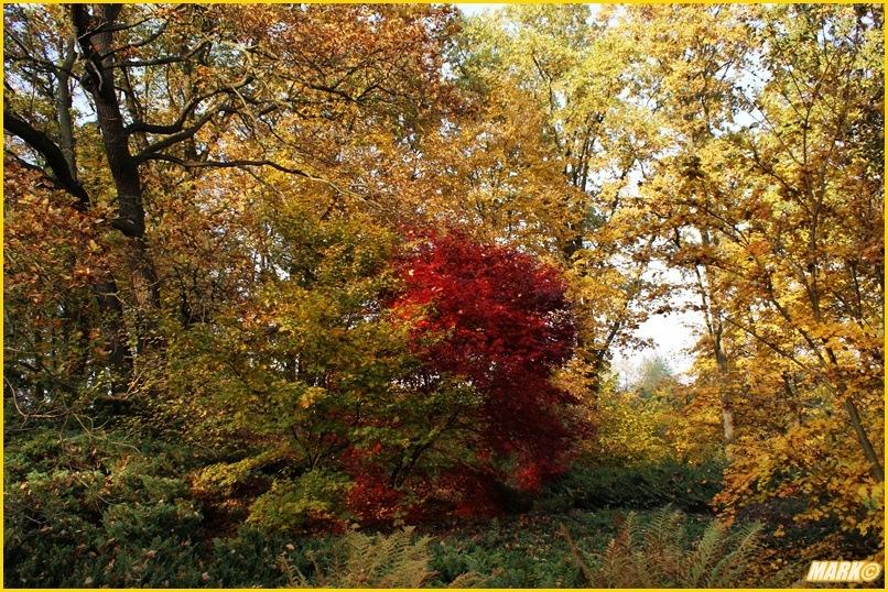 Kolory Jesieni - Blog 8