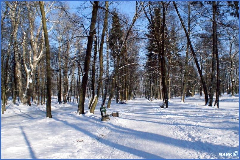 Zima w Parku (11)