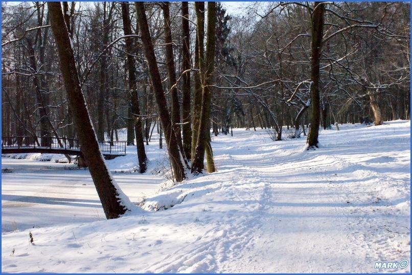 Zima w Parku (17)
