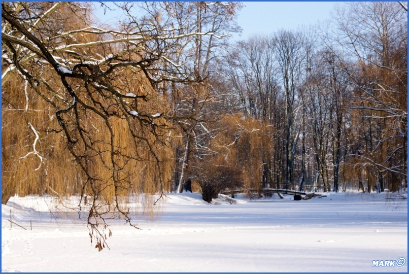 Zima w Parku (7)