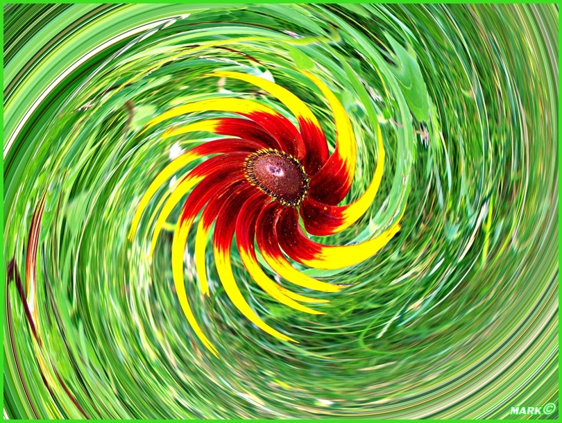 Kwiat - Swirl 02