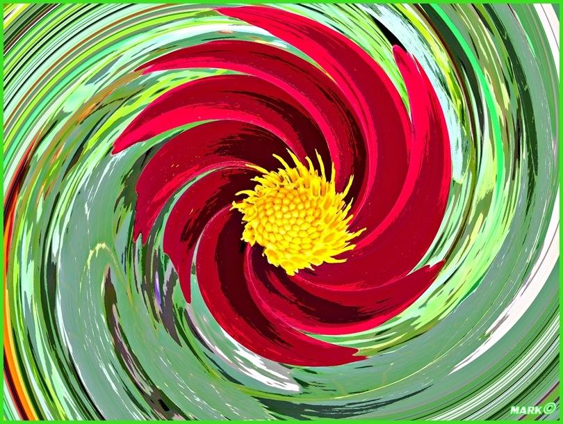 Kwiat - Swirl 03