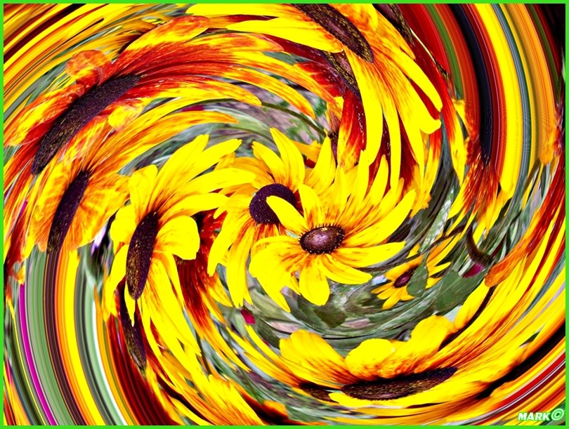 Kwiat -  Swirl 05