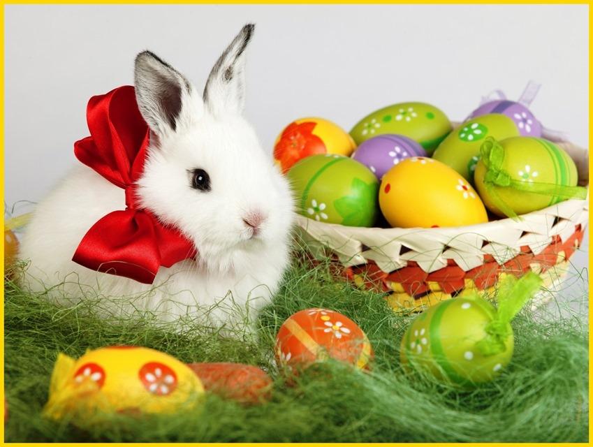 Easter-Bunny-Desktop-Wallpaper-Free-HD-aaa1-super-1a_thumb.jpg