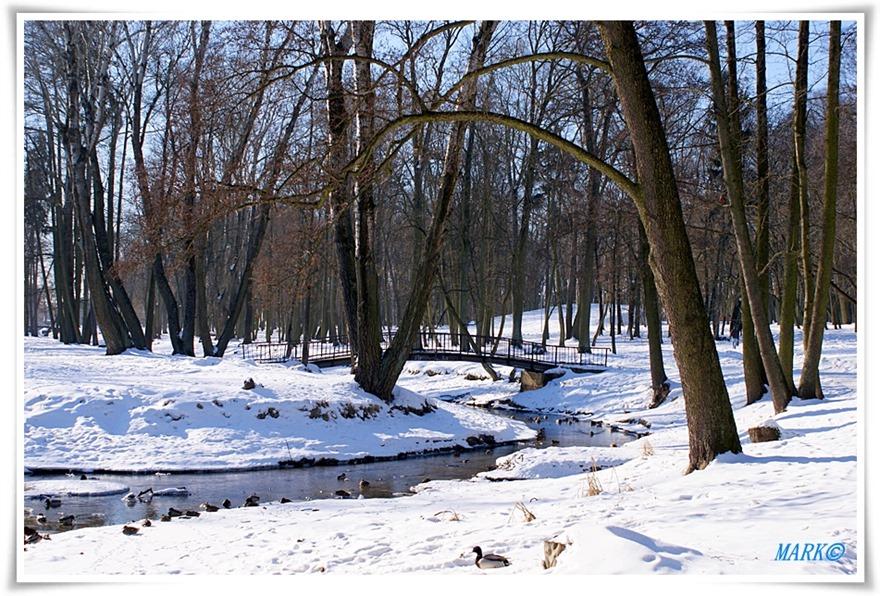 Zima 02